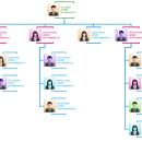 Import data to organization chart
